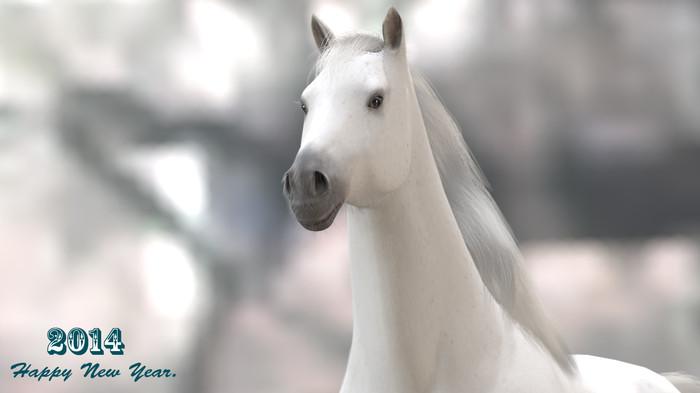 Horse07hd2