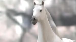 Horse07hd2_2
