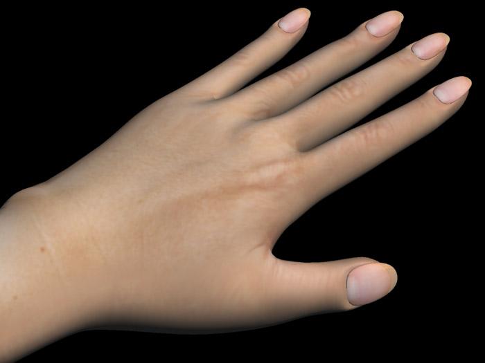 Hand19b02